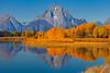 Oxbow Bend Autumn Moments - Grand Teton National Park, WY