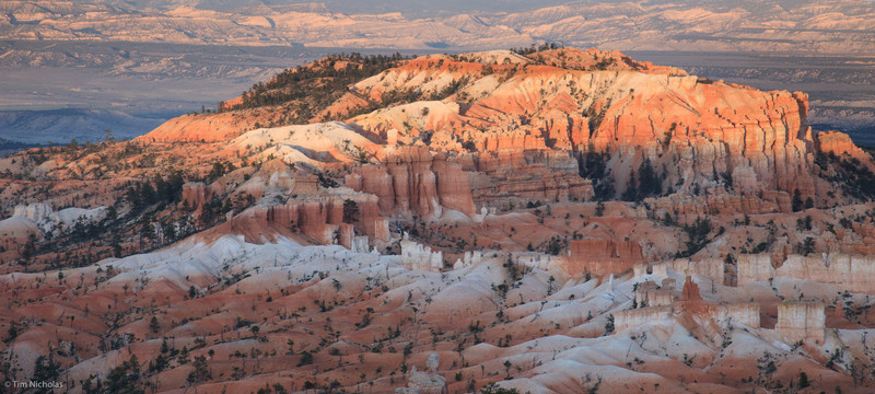 Bryce: Bristlecone Point
