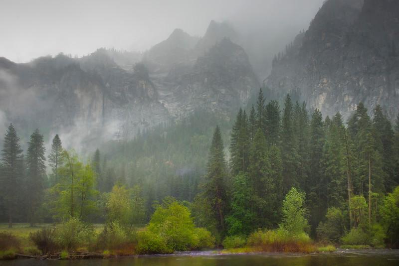 A Rainy Morning Near Valley View - Yosemite National Park, Sierra Nevadas, California