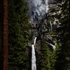 Upper And Lower Yosemite Framed By Ponderosa - Yosemite National Park, Sierra Nevadas, California