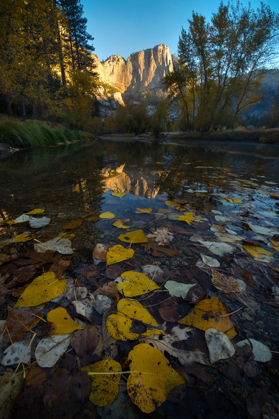 Upper Yosemite Falls Reflections From Below Swinging Bridge - Lower Yosemite Valley, Yosemite National Park, California