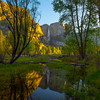 Reflections Of Upper Yosemite In A Spring Pool - Yosemite National Park, Sierra Nevadas, California
