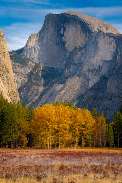 Half Dome In Ahnawhee Meadow And Aspens - Lower Yosemite Valley, Yosemite National Park, California