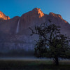 Morning Early Morning In The Mist And Upper Yosemite Falls - Yosemite National Park, Sierra Nevadas, California