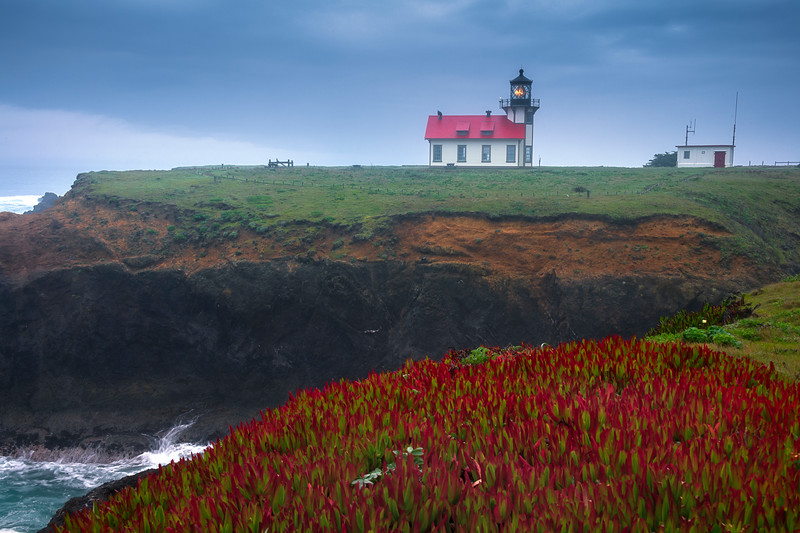 Point Cabrillo Lighthouse And Ice plants - Cabrillo Lighthouse, Mendocino, California