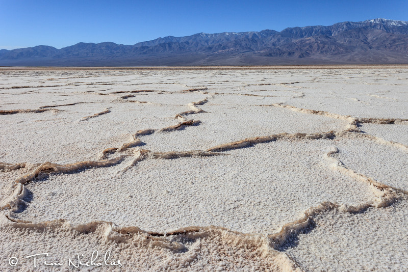 Death Valley salt polygons