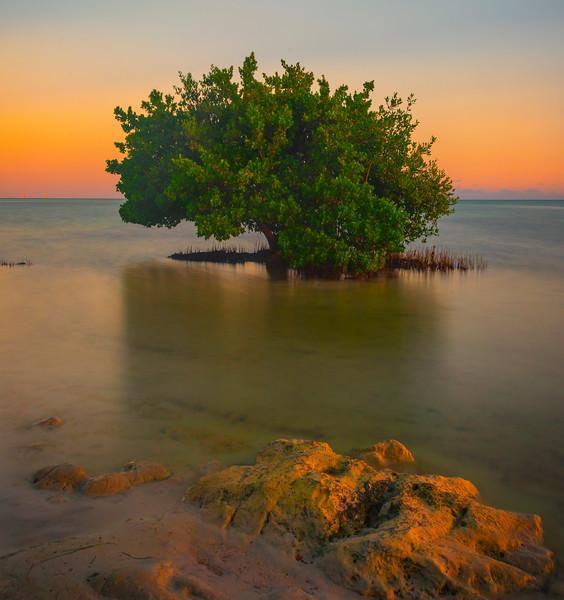 Silence At Sunset In The Florida Keys -  Key Largo, Florida Keys, Florida