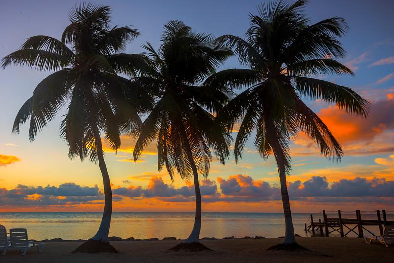 Trio Of Silhouettes In Florida Keys - Marathon, Florida Keys, Florida