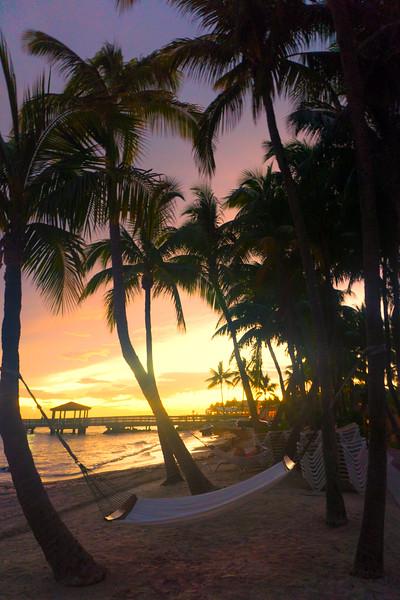 Sunset In The Hammocks At Key West - Key West, Florida Keys, Florida