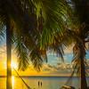 Spot Under The Tree To Waych Sunrise - Marathon, Florida Keys, Florida