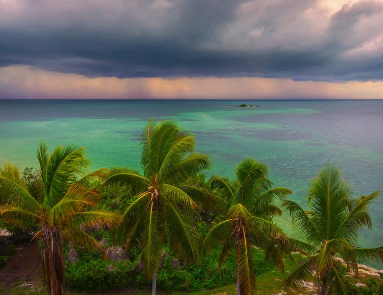 Storm Front And Palm Trees - Bahia Honda State Park, Florida Keys, Florida