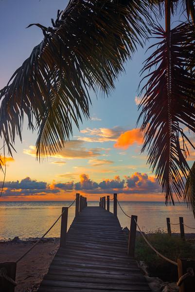 Broken Away In Paradise - Marathon, Florida Keys, Florida