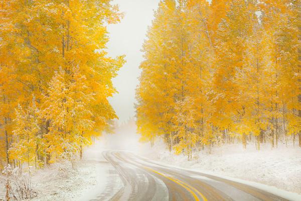The Moment Winter Meets Autumn - Maroon Bells-Snowmass Wilderness, Aspen, Colorado