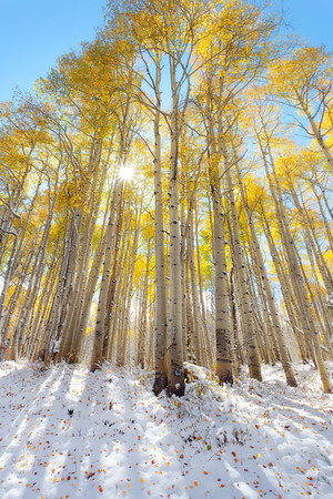David And Goliath - McClure Pass, Colorado