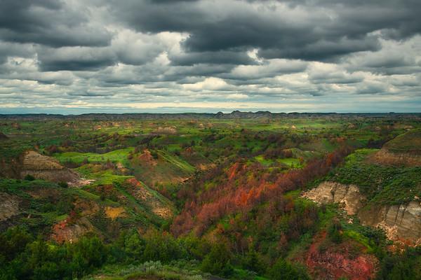 Spring Peak In Badlands Valley - Theodore Roosevelt National Park, North Dakota