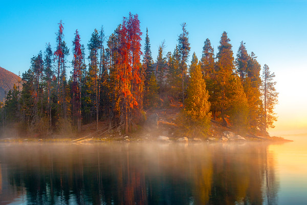 Island Of Mystery In Morning Mist - Grand Teton National Park, WY