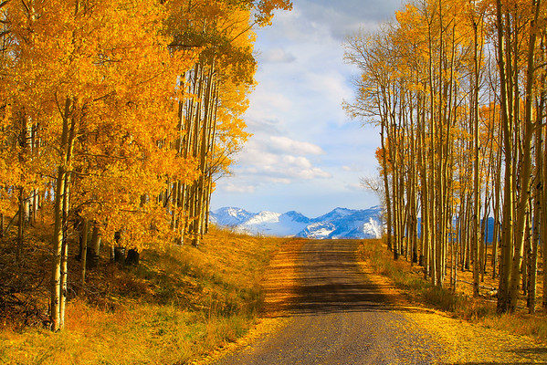 The Road Less Travelled Into Telluride - Last Million Dollar Highway, Telluride, Colorado