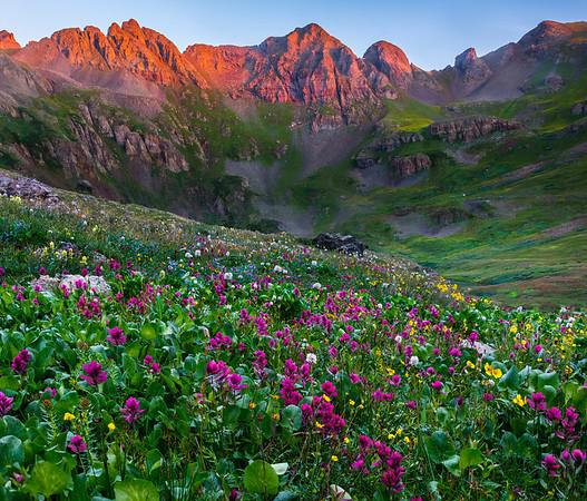 Mountain Meadows - San Juan Mountains, Colorado