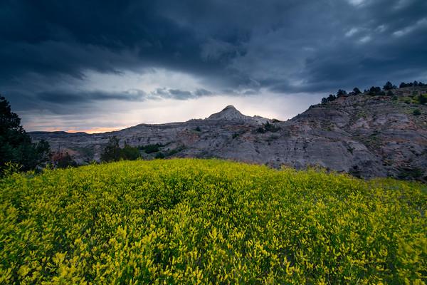 Yelllow Storm - Makoshika State Park, Glendive, Eastern Montana