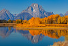 Oxbow Bend Autumn Moments - Grand Teton National Park, WY