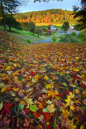 End Of Autumn At Sleepy Hollow Farm  - Woodstock, Vermont