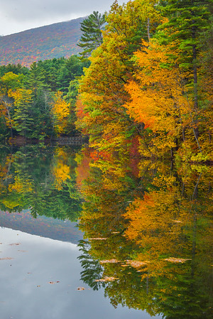 Symmetry In Motion - Vermont
