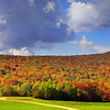 Roadside Autumn - New Hampshire
