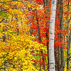 Autumn Dreams - New Hampshire