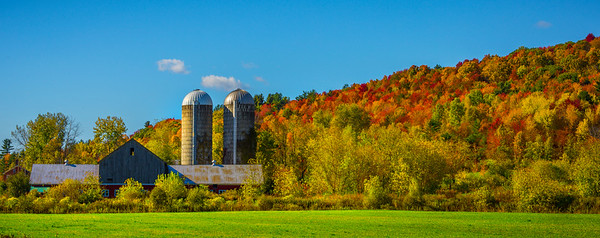 Autumn Life On The Vermont Barn_Pano
