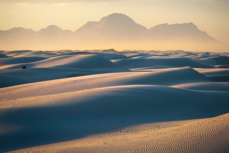 Golden Light Shadows And Curves_Tighter Frame - White Sands National Monument, New Mexico