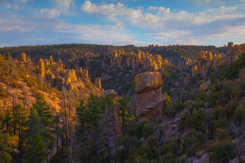Last Of The Light Entering Into The Canyon - Chiricahua National Monument, Arizona
