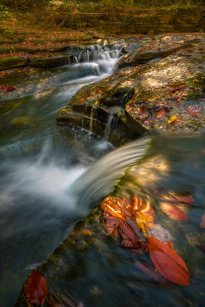 Converging Streams Of Cascades In Late Light - Robert Treman Park, Finger Lakes Region, Upstate NY, NY