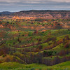 Rolling Spring Valleys Of Color - Theodore Roosevelt National Park, North Dakota