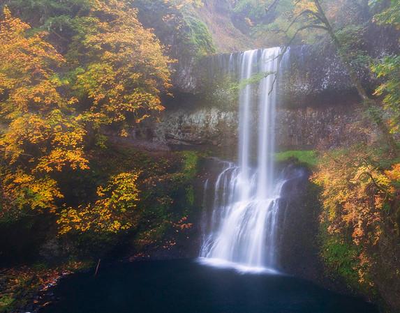 Misty Morning - Silver Falls State Park, Oregon
