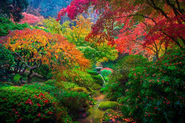 A Touch Of The Rainbow - Portland Japanese Gardens, Portland