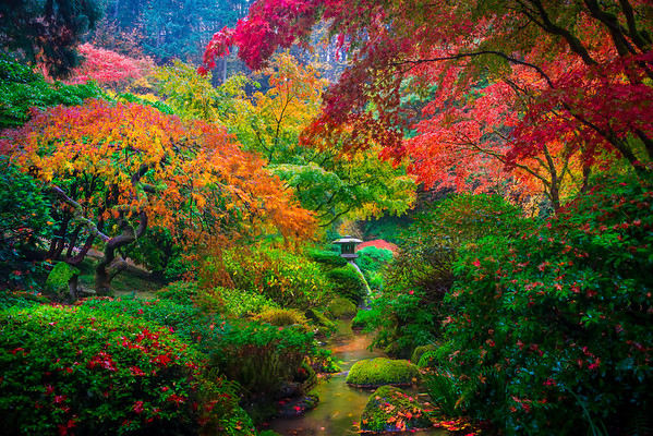 A Touch Of The Rainbow - Portland Japanese Gardens, Portland