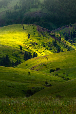 Shades Of Rolling Light In The Valley - Wallowa County, Oregon