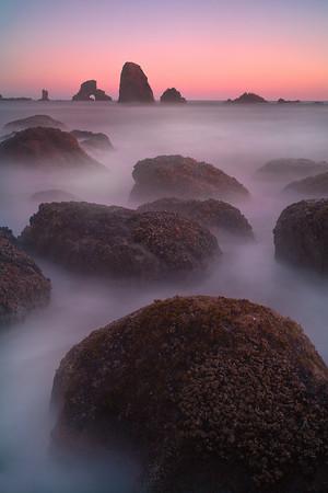 Strange Creatures In The Sea - Indian Beach, Oregon Coast, Oregon