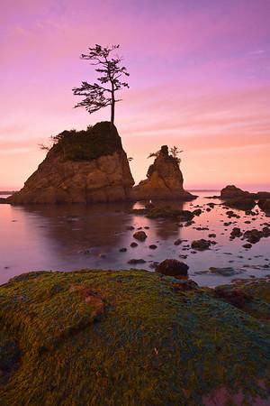 Morning Twilight - Garibaldi Bay, Oregon Coast, Oregon