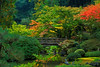 Idyllic Moments Of Color - Portland Japanese Garden, Oregon