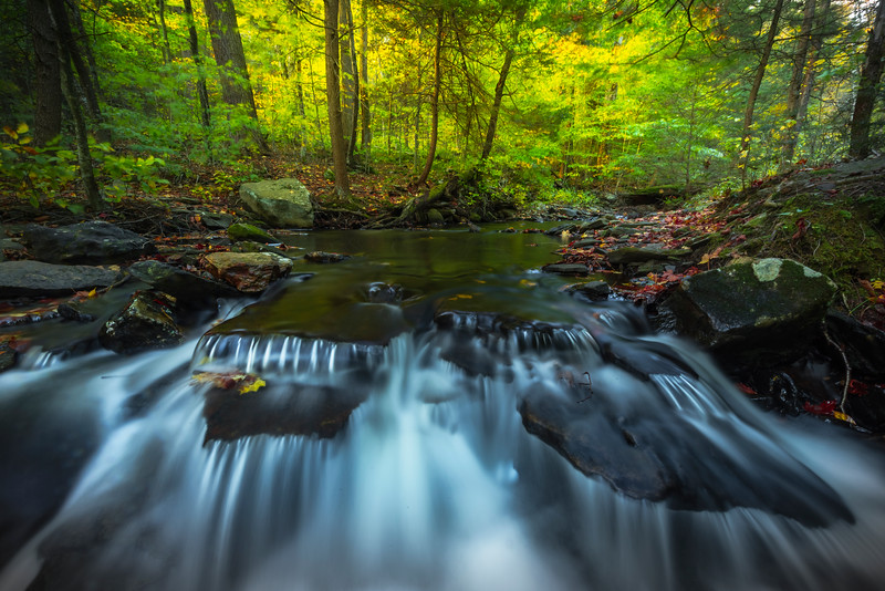 In Tight On Waterfall Cascades-Ricketts Glen State Park, Benton,  Pennsylvania