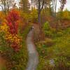 Walking Trails Through The Allegheny Mountains - Allegheny Mountain Range, Pennsylvania