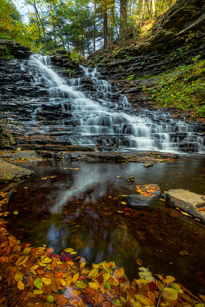 Leading Lines Of Autumn Leaves Into The Falls-Ricketts Glen State Park, Benton, Pennsylvania
