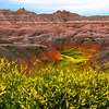 A Mesh Of Sweet Clover And Badlands Together - Badlands National Park, South Dakota
