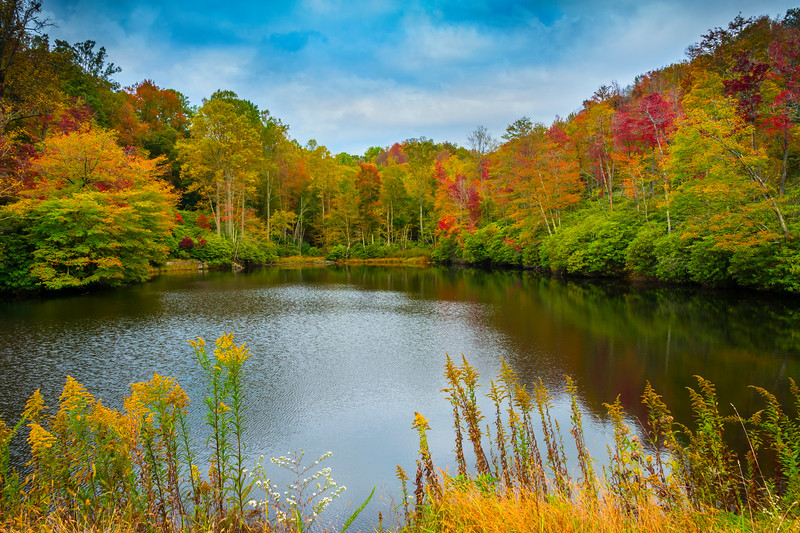 A Natural Cove Of Color Hiding On Grandfather Mountain - Grandfather Mountain, North Carolina