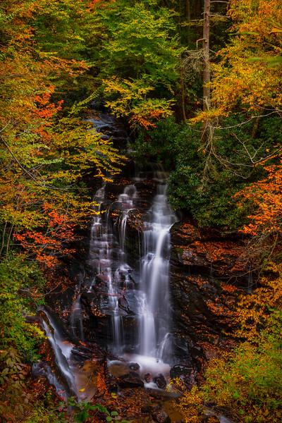 Working Down The Path To Soca Falls - Soca Falls, Qualla, North Carolina