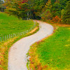 Pathway To Color On The Paths Of Grandfather Mountain - Grandfather Mountain, North Carolina
