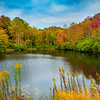 Pisgah National Forest - Great Smoky Mountain Region, North Carolina_10