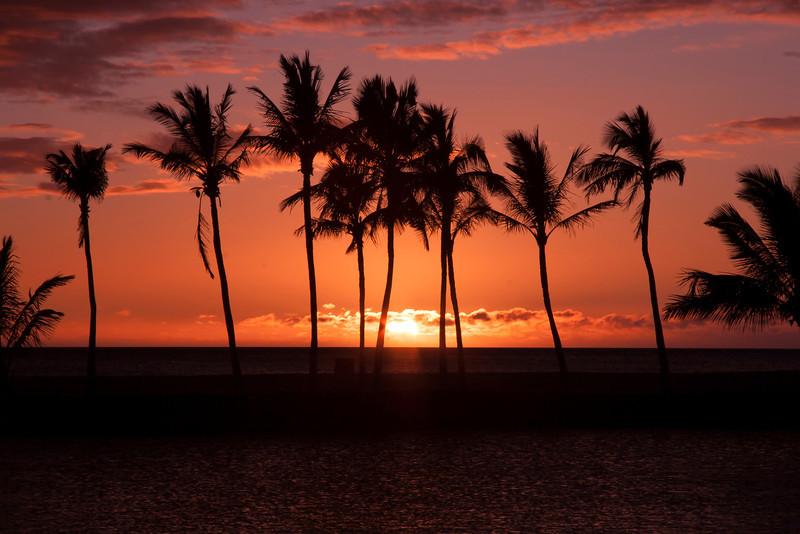 Blissful Moments In Hawaii - A'Bay Pond - Kona, Hawaii