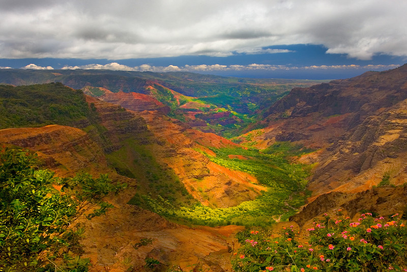 Color Bursting In The Valley - Waimea Valley, Kauai, Hawaii
